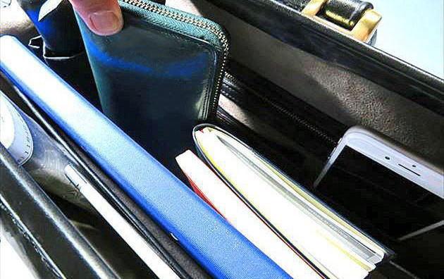 ブライドルダレスバッグからプルキャラッククラウディオを取り出す写真
