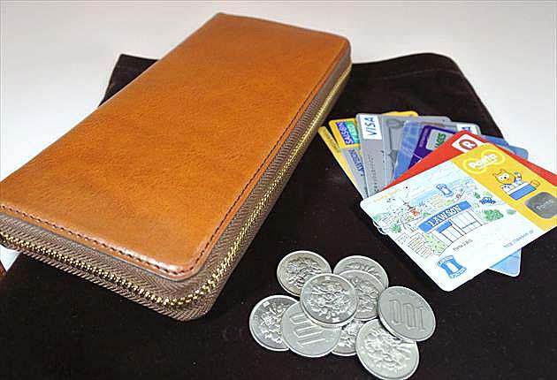 コインとカードをマックスラージに収納してみる