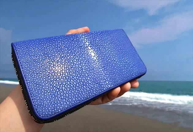海岸でバハリのガルーシャ財布を手に持つ